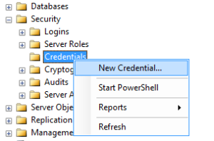 Click on new credential